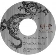 Zi Wei Dou Shu II - Posicionamento e análise do restante das estrelas