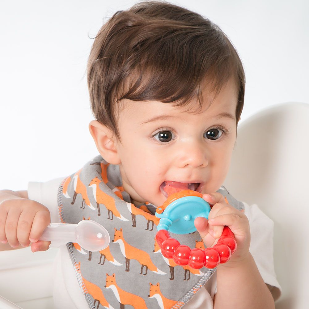Alimentador de Frutas Para Bebê - Comtac