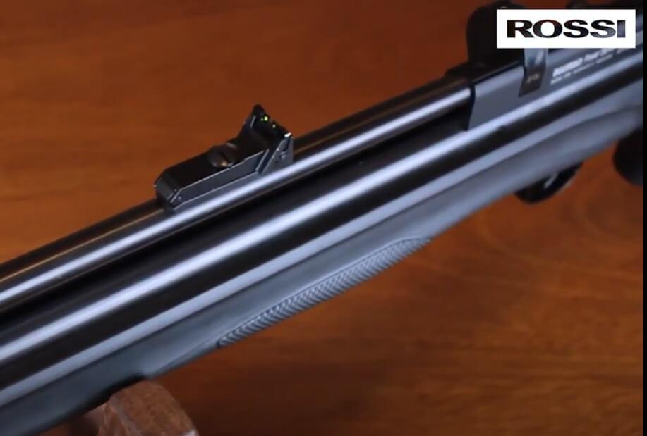 Carabina PCP Beeman 1336 POLÍMERO QB II PLUS 5,5mm + Bomba + Luneta 4x32