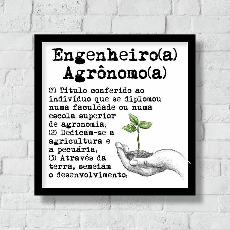 Quadro Decorativo   Arte Profissão Engenheiro(a) Agrônomo(a)
