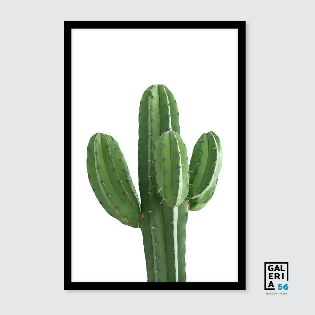 Quadro Decorativo | Arte Cacto