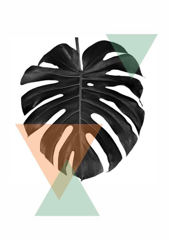 Quadro Decorativo | Arte Folha Costela de Adão Geométrico