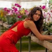 Vestido Diana Amarrado nas Costas