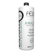 Felps Shampoo Que Alisa Omega Zero Amazon 500ml