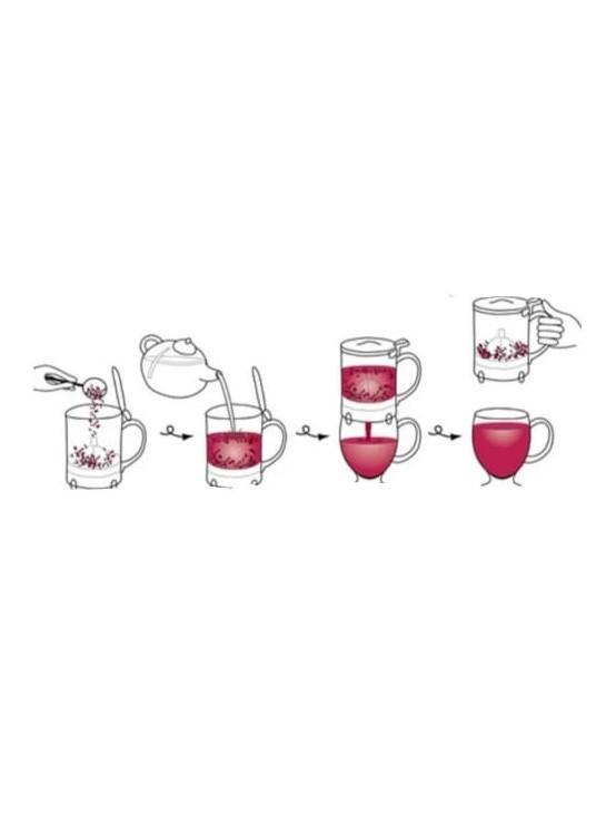HANDYBREW - BULE PARA CHA EM ACRILICO TRANSPARENTE - 500 ml