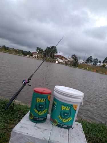 Massa De Pesca Pau No Gato 3 Kg Com Balde Para Mistura