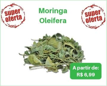 moringa, cha de moringa, moringa oleifera, moringa oleifeira