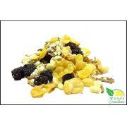 Granola Premium sem Açúcar Granolevis - Granel