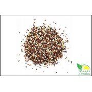Mix de Quinoa - Granel