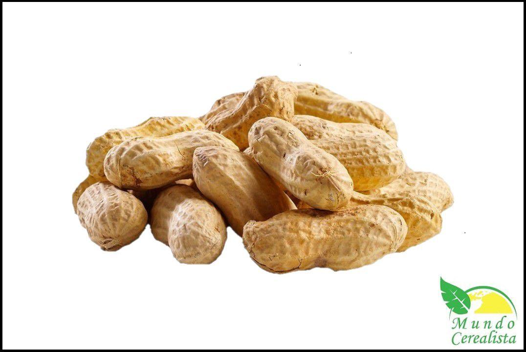 Amendoim Com Casca Torrado Runner - Granel  - Mundo Cerealista