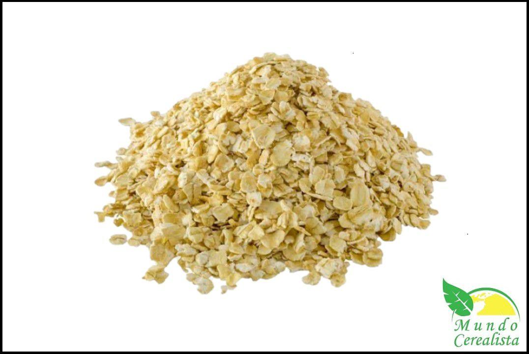 Aveia em Flocos Grossos - Granel  - Mundo Cerealista
