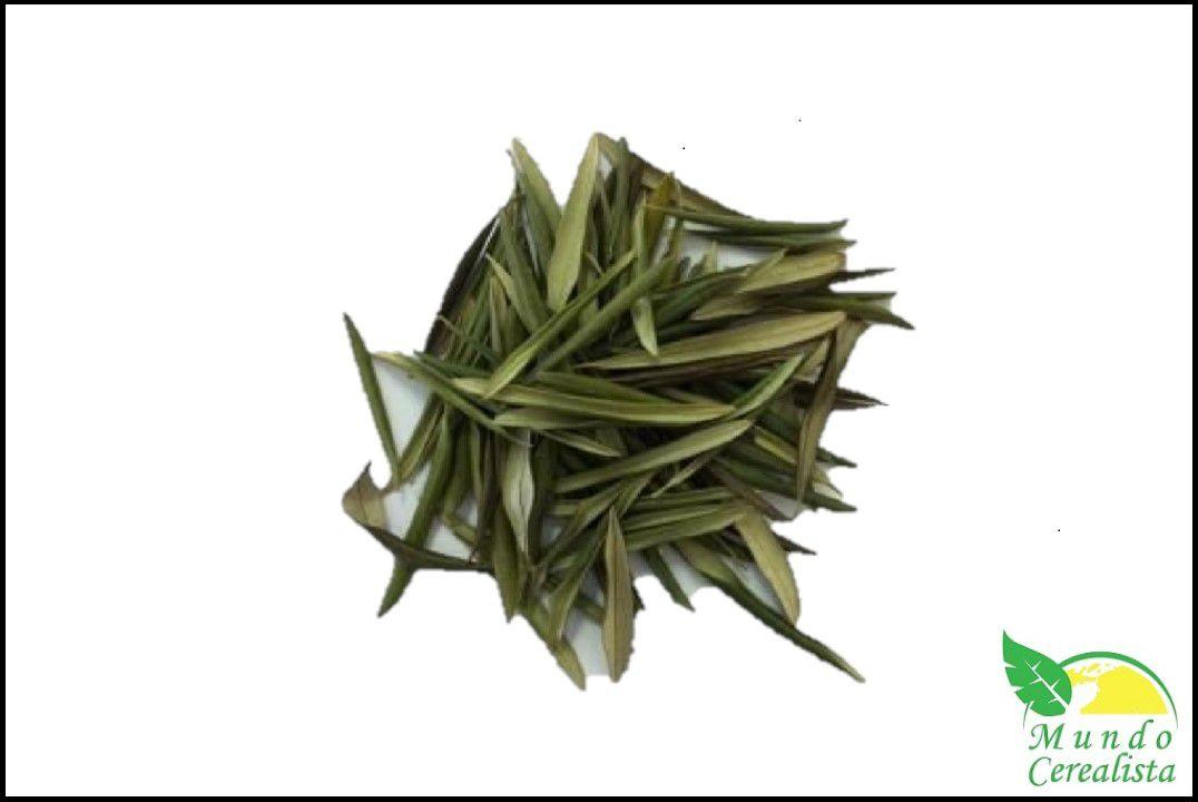 Chá de Oliveira - Granel  - Mundo Cerealista