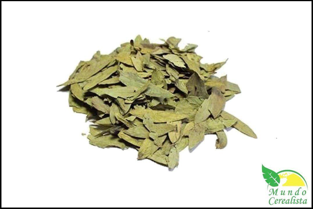 Chá de Sene - Granel  - Mundo Cerealista