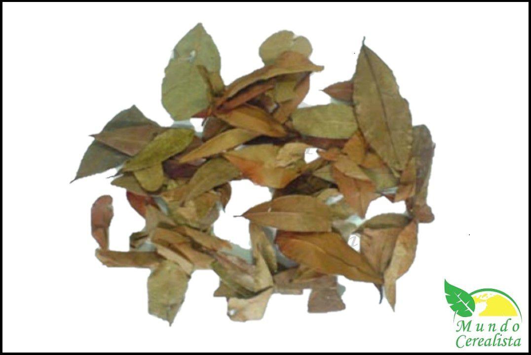 Chá pedra ume CAA - Granel  - Mundo Cerealista