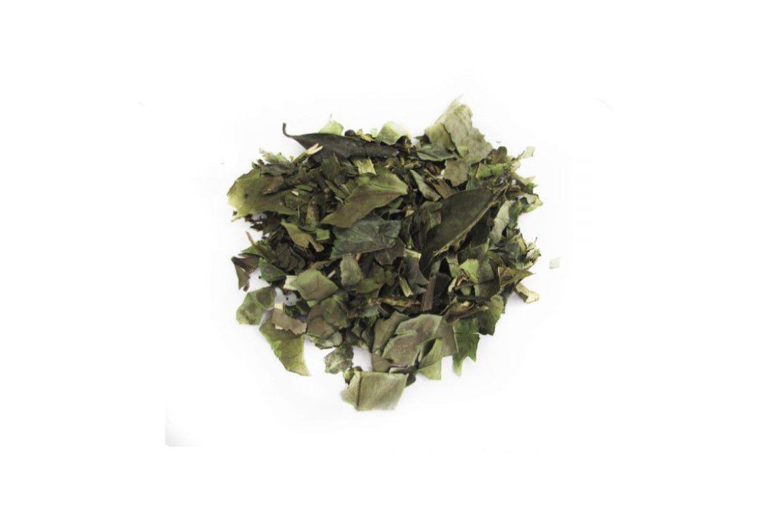 Chá Verde  - Mundo Cerealista
