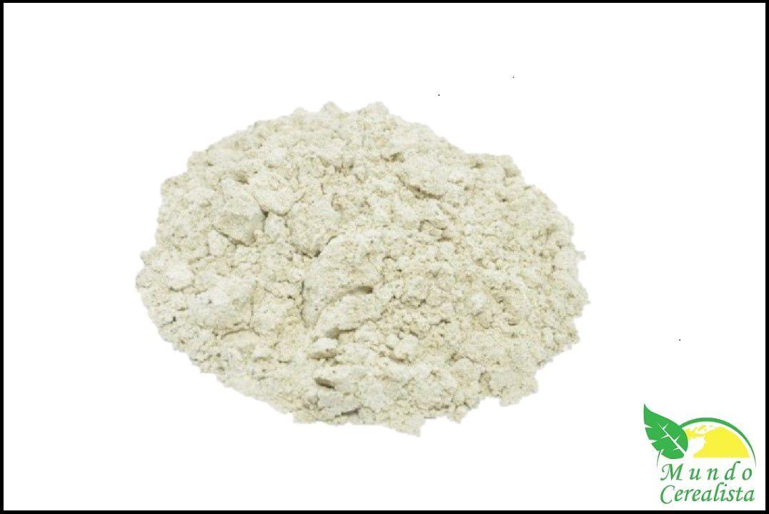 Farinha de Berinjela - Granel  - Mundo Cerealista
