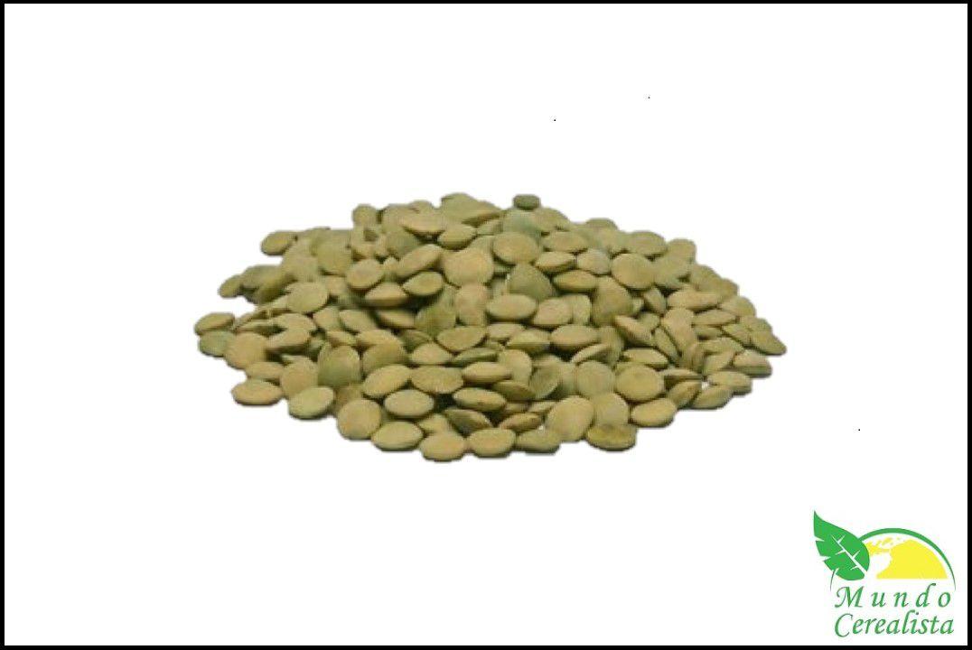 Lentilha Verde - Granel  - Mundo Cerealista