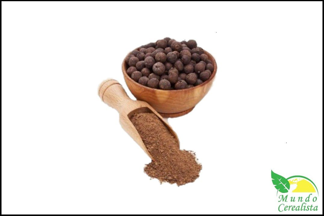 Pimenta Jamaica Moída - Granel  - Mundo Cerealista