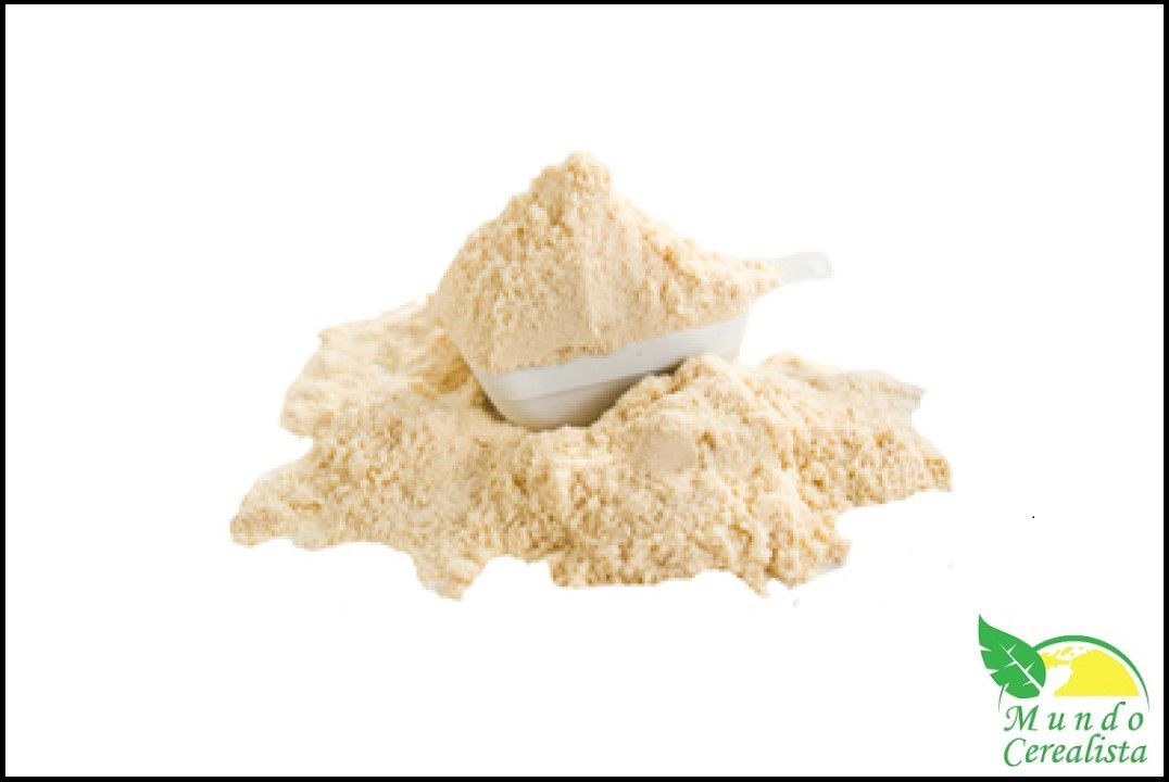 Whey Concentrado Baunilha Premium - Granel  - Mundo Cerealista