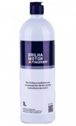 Brilha Motor 1L Finisher