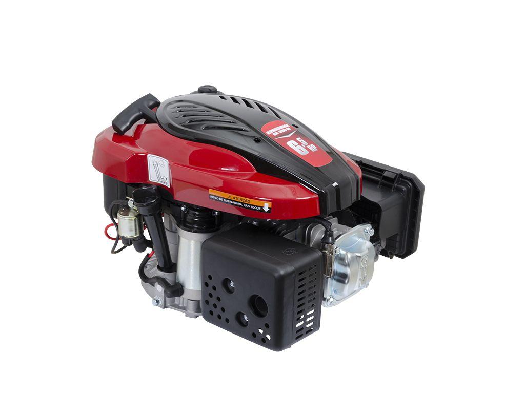 Motor Vertical 6 5Hp Gv650Me E61.9 Rab Kawashima