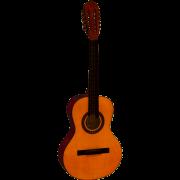 Viola Giannini Start Acústica VS-14