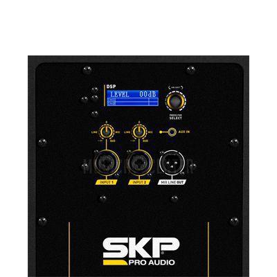 Caixa SKP Ativa Q15  15 Polegadas 1000W