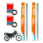 Tubo Cilindro Interno Bengala XLR 125 Cofap + Retentor - Par