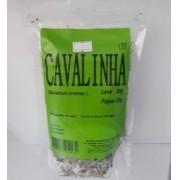 CHA  CAVALINHA 30G - LAB.AMAZONAS