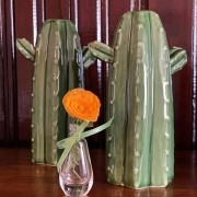 Cactus em Cerâmica