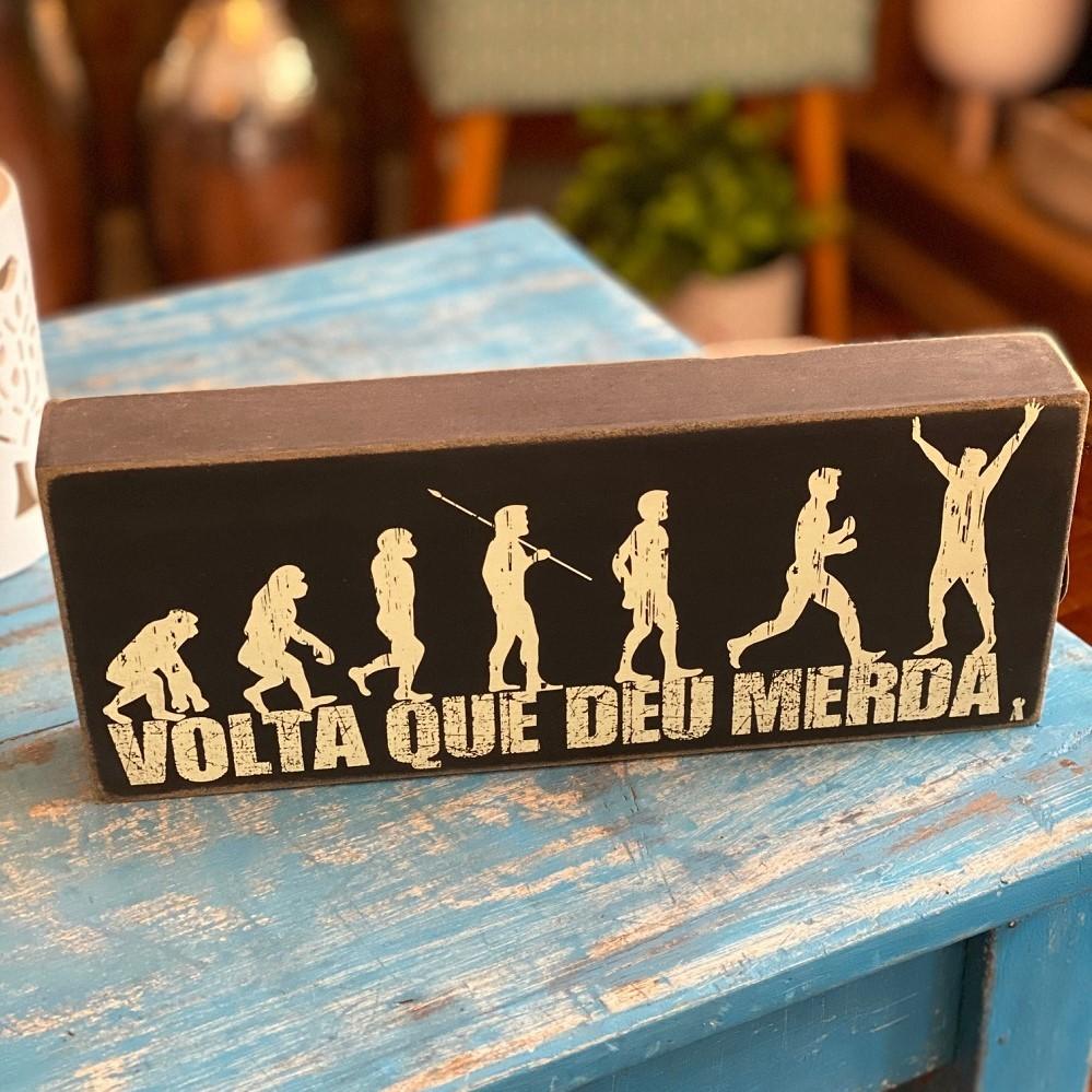 """Enfeite Box em Madeira mdf - """"Volta que deu m..."""""""