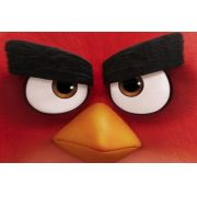 Painel Decorativo Festa Angry Birds O Filme #08