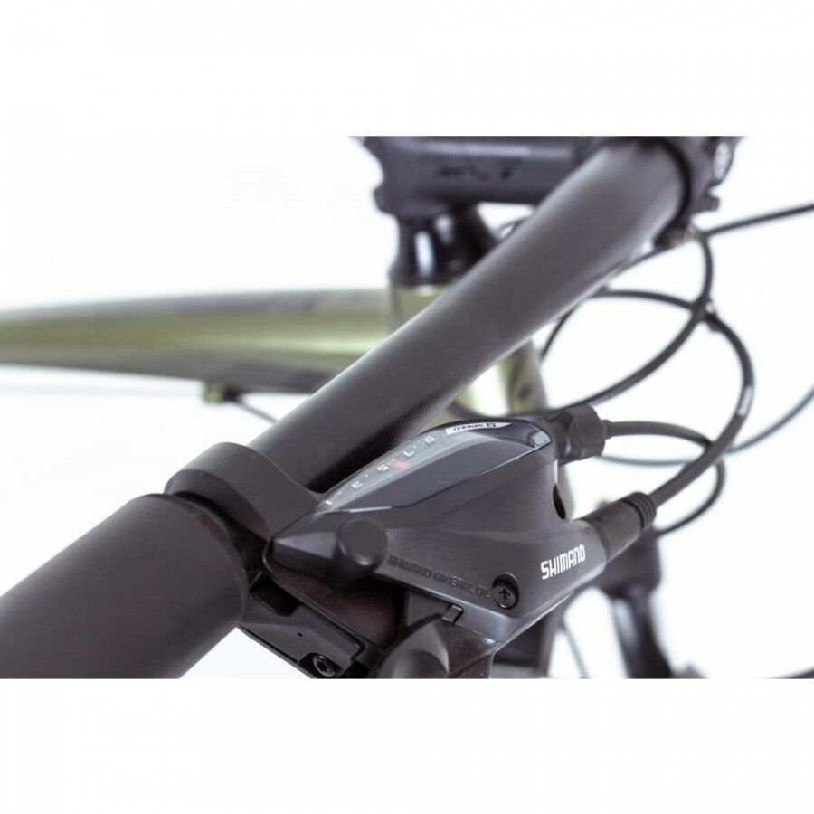 Bicicleta TSW Hunch Plus 2019