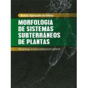 Morfologia de sistemas subterrâneos de plantas