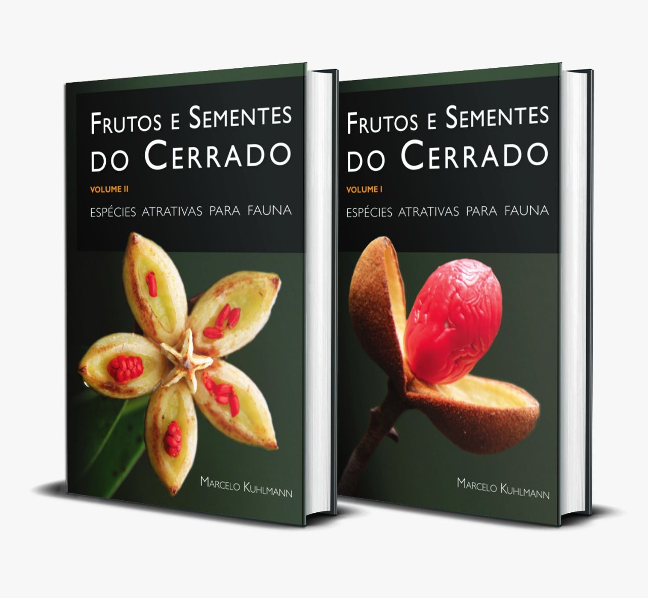 FRUTOS E SEMENTES DO CERRADO - VOLUMES I E II