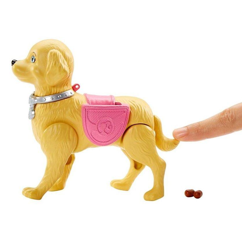 Boneca Barbie Passeio com Cachorrinho - Mattel