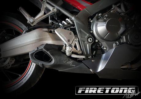Escapamento Willy Made Honda CBR 650 F /15-17/  - Firetong