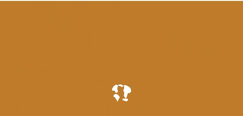 Mundo dos Narguiles