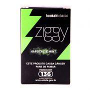 Ziggy - Hapocalyx Mint 50g