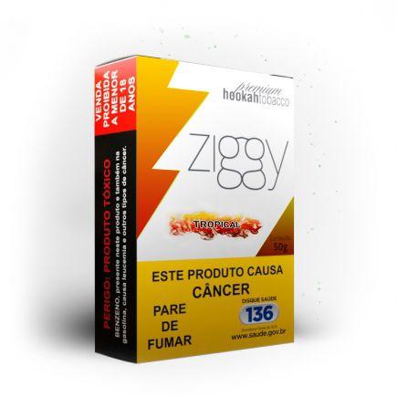 Ziggy - Tropical 50g