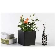 Vaso De Ceramica Preto Fosco Plantas Suculentas