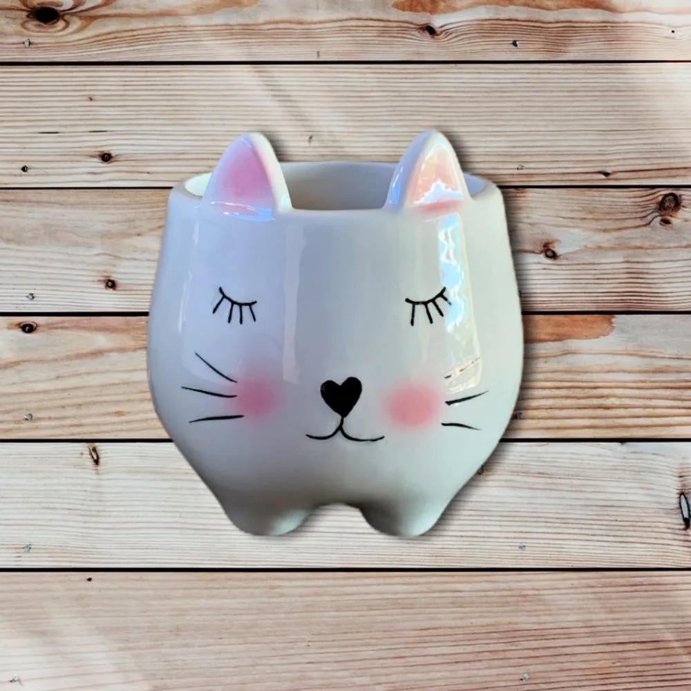 Cachepot Suculenta Decoração De Cerâmica Gato Vasinho