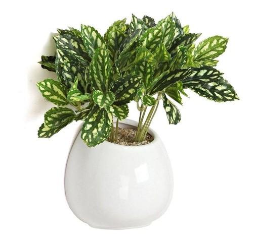 Kit 4 Vasos De Parede Cerâmica Jardim Flores 8x10cm Branco