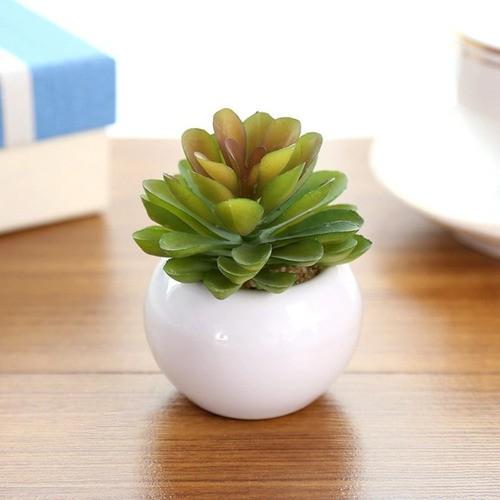 Kit 6 Mini Vaso Aquário Redondo De Cerâmica Decoração 70ml