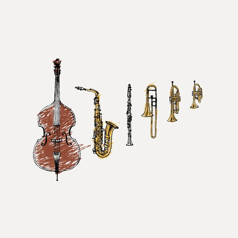 Longet Feminina Instruments