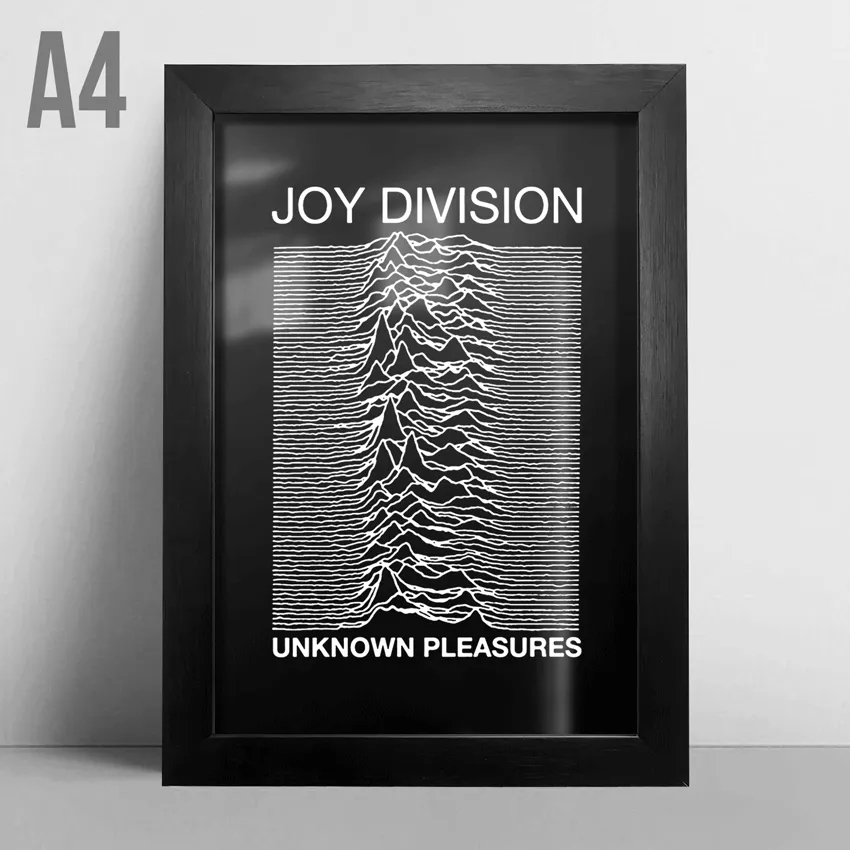 Quadro A4 - Unknown Pleasures