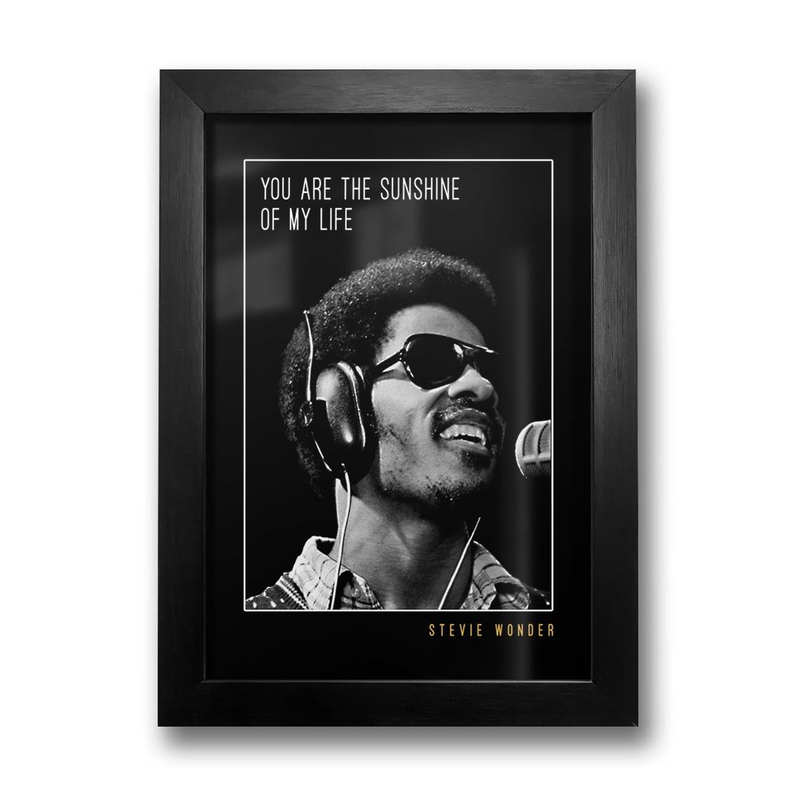 Quadro Stevie Wonder