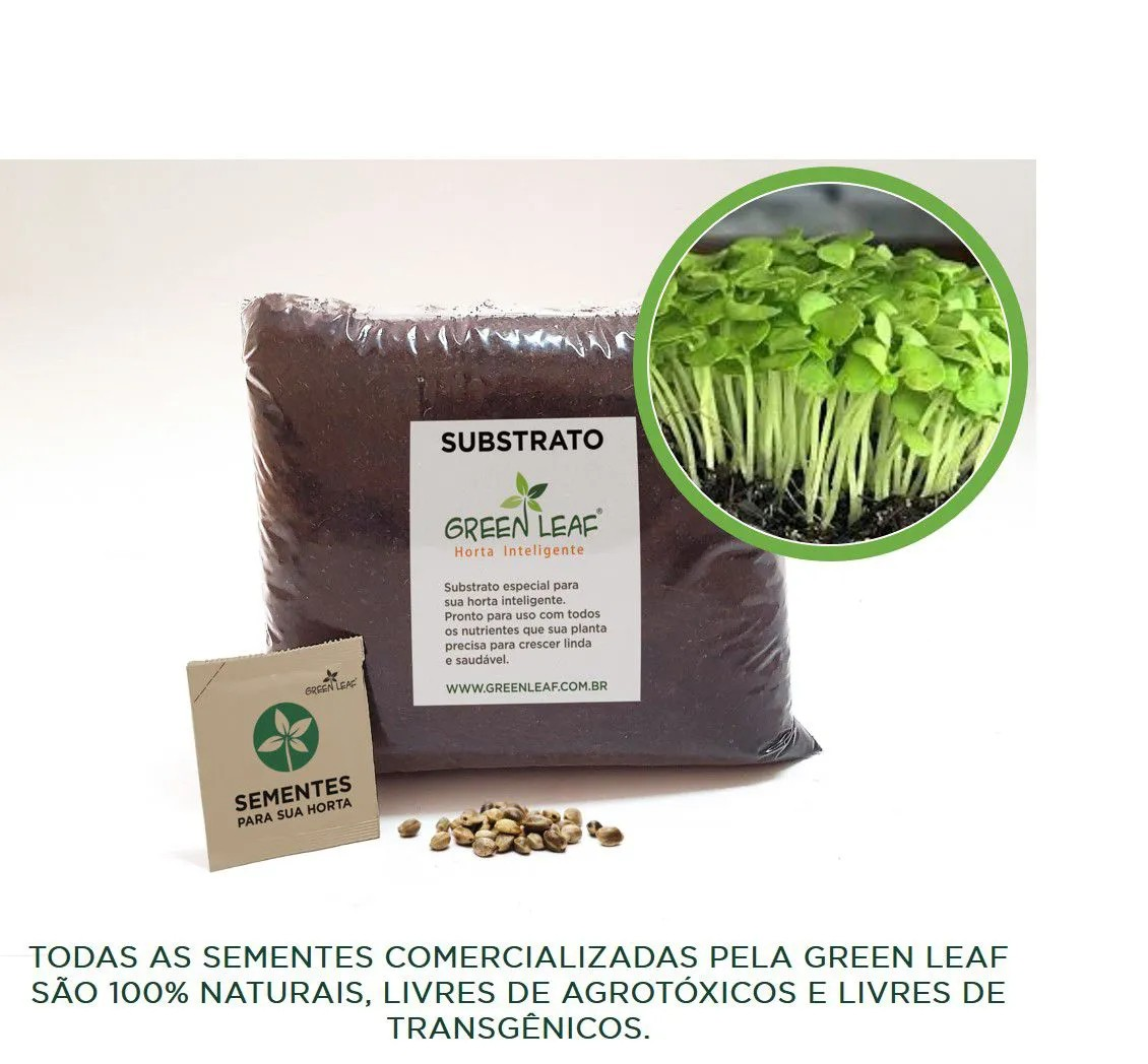 KIT - AGRIÃO DO SECO (MICROVERDES)