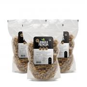 Caixa Granola Premium Castanha e Coco 400gr - 10 unidades