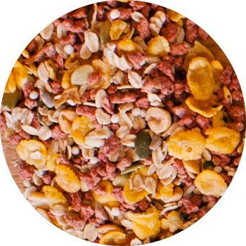 Caixa Granola Salgada Bacon com Cebola - 10kg